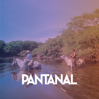 1CF 2017 - Pantanal.jpg-01