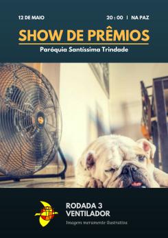 Show de Prêmios Parsantri (3)